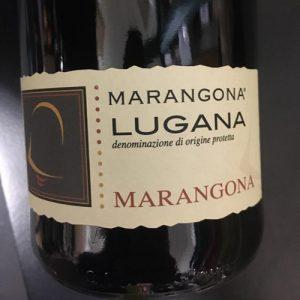 vino rosso - Consegna a domicilio Verona